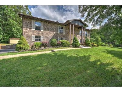 Greeneville Single Family Home For Sale: 305 Oak Hills Parkway