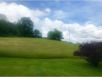 Residential Lots & Land For Sale: 5821 Hwy 11e