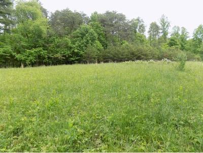 Butler Residential Lots & Land For Sale: 4 Dugger Bridge Rd