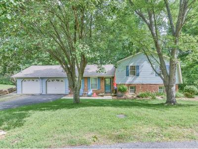 Kingsport Single Family Home For Sale: 1053 Amersham Road