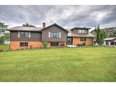 Gray Single Family Home For Sale: 518 Ford Creek Road