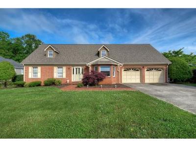 Johnson City Single Family Home For Sale: 317 Shadowood Dr