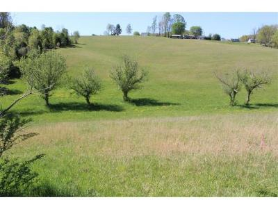 Residential Lots & Land For Sale: Bell Ridge Rd And Rector Dr