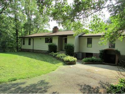 Elizabethton Single Family Home For Sale: 133 Hickory Hollow Road