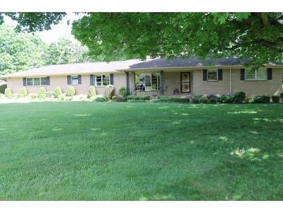 Abingdon Single Family Home For Sale: 19438 Jonesboro Road