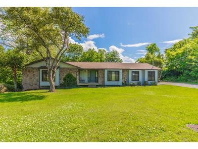 Kingsport Single Family Home For Sale: 2401 Rivermont Drive