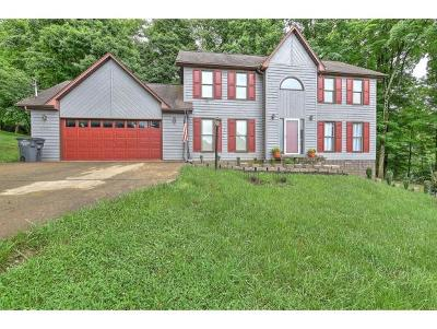Kingsport Single Family Home For Sale: 4701 Edens View Road