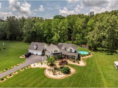 Jonesborough Single Family Home For Sale: 4486 Greenwood Drive