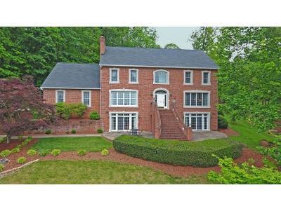 Johnson City Single Family Home For Sale: 2100 Millbrook Drive