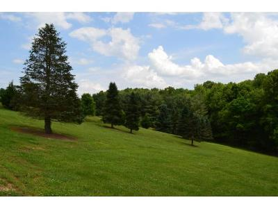 Residential Lots & Land For Sale: Lot#4 Country Acres Dr