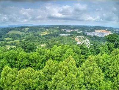 Residential Lots & Land For Sale: 358 Bell St