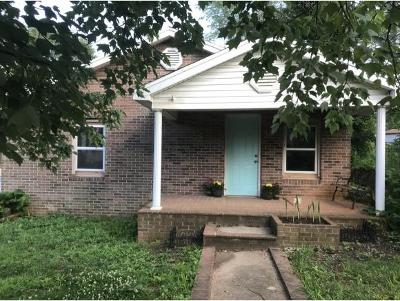 Kingsport TN Single Family Home For Sale: $34,900
