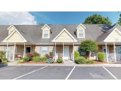 Kingsport TN Condo/Townhouse For Sale: $108,000