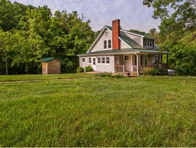 Kingsport Single Family Home For Sale: 370 Palmer Rd.