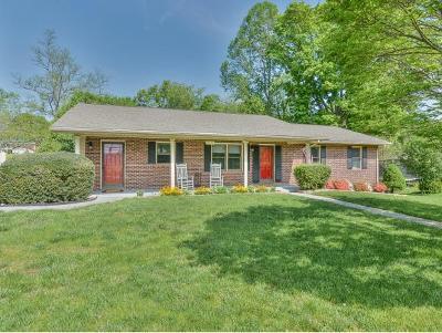Johnson City Single Family Home For Sale: 1505 E. 11th Avenue
