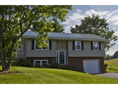 Johnson City Single Family Home For Sale: 141 Hillrise Rd.