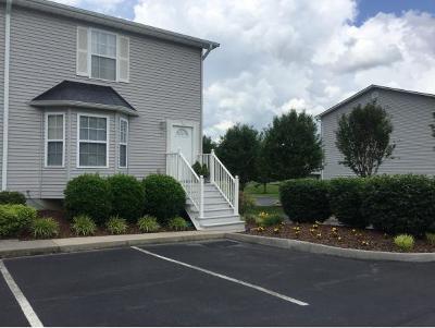 Jonesborough Condo/Townhouse For Sale: 147 Old State Route 34 #17