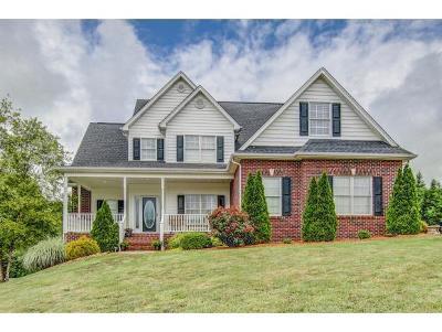 Blountville Single Family Home For Sale: 104 Birchwood Court