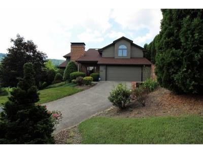 Kingsport Single Family Home For Sale: 223 Willowbend Ct