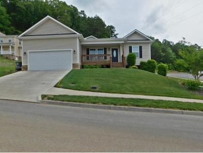 Kingsport Single Family Home For Sale: 1711 Bridle Court