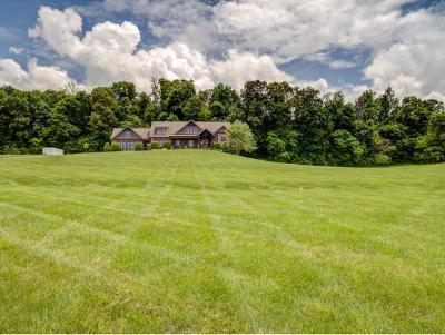 Jonesborough Single Family Home For Sale: 606 Hairetown