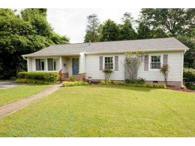 Johnson City Single Family Home For Sale: 1302 Welbourne St