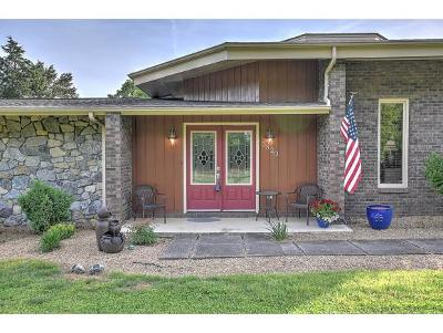 Kingsport Single Family Home For Sale: 3820 Lake Valley Rd
