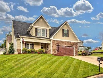 Kingsport Single Family Home For Sale: 2584 Bridgeforth Xing