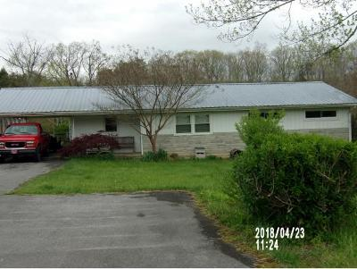 Fall Branch Single Family Home For Sale: 440 Chimney Top Loop
