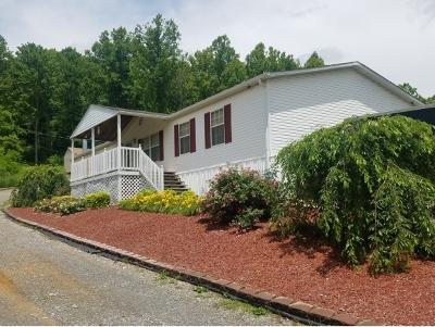 Jonesborough Single Family Home For Sale: 1027 Hairetown Rd