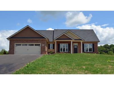 Johnson City Single Family Home For Sale: 224 Old Stage Rd