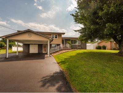 Bluff City Single Family Home For Sale: 190 Elm Lane