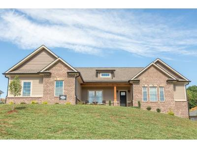 Johnson City Single Family Home For Sale: 1299 Savin Falls