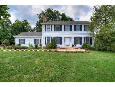 Johnson City Single Family Home For Sale: 2 Flo Court