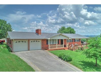 Rogersville Single Family Home For Sale: 257 Austin Mill Road