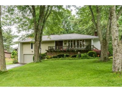 Johnson City Single Family Home For Sale: 907 Grady Drive