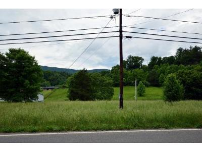 Butler Residential Lots & Land For Sale: Lot 3 Hwy 67