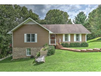 Johnson City Single Family Home For Sale: 3708 Meadow Green Dr.