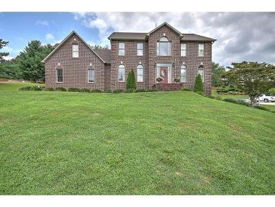 Blountville Single Family Home For Sale: 421 Fairway Estates Drive