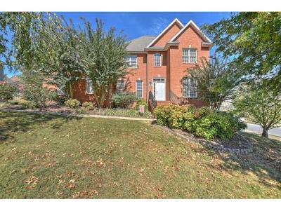 Johnson City Single Family Home For Sale: 422 Emerald Chase