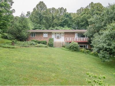 Johnson City Single Family Home For Sale: 1615 Seward Dr