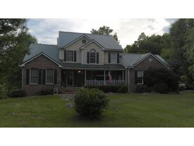 Blountville Single Family Home For Sale: 990 Fairview School Road