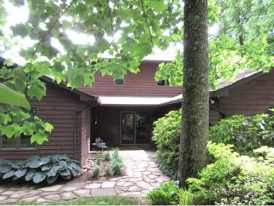 Johnson City Single Family Home For Sale: 1600 Strawberry Lane