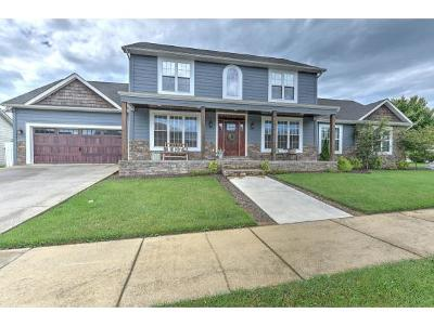 Johnson City Single Family Home For Sale: 107 Saint Mary's Court