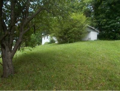 Jonesborough Single Family Home For Sale: 164 Harmony Rd.