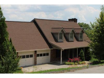 Blountville Single Family Home For Sale: 330 Buena Vista Drive