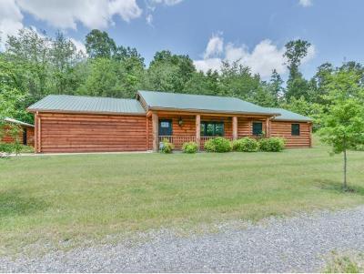 Jonesborough Single Family Home For Sale: 1039 Old Boones Creek Road