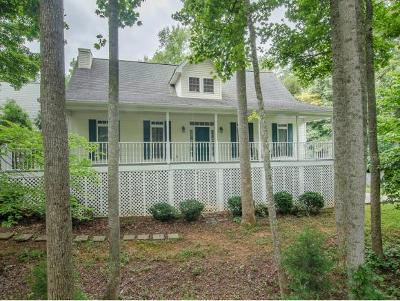 Johnson City Single Family Home For Sale: 121 Lone Star Dr