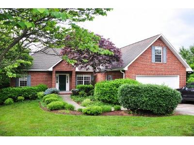 Johnson City Single Family Home For Sale: 4 Belshire