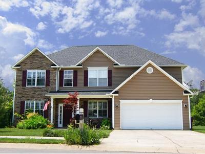 Johnson City Single Family Home For Sale: 740 Candor Rd